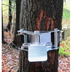 Support d'ancrage de treuil pour arbres avec courroie 50mm x 3m